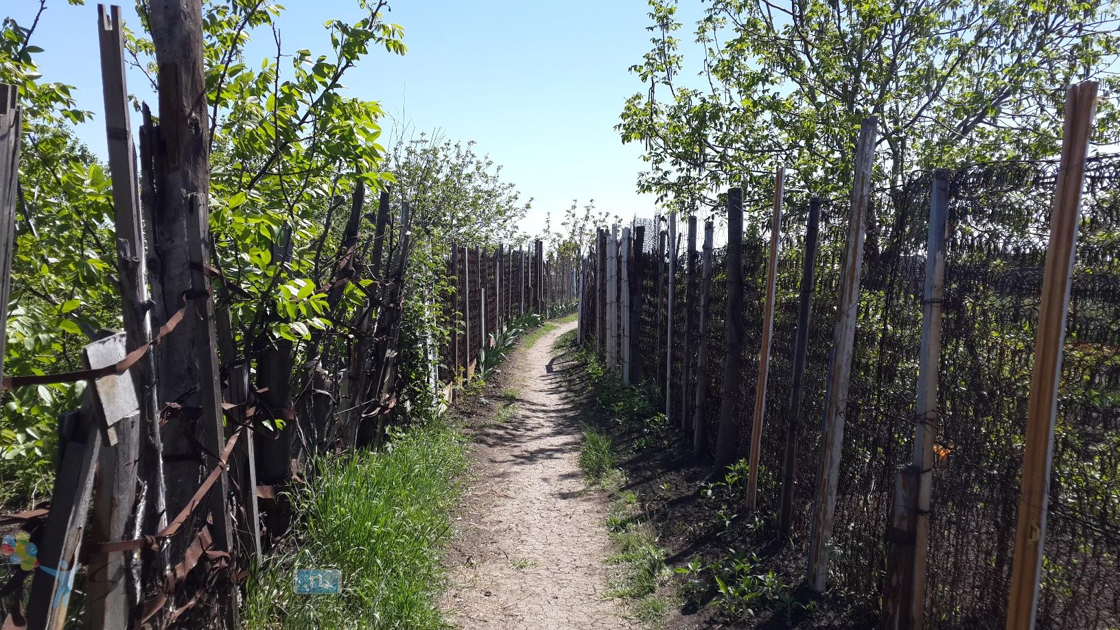 Фото с камеры Galaxy S4 - весенний забор