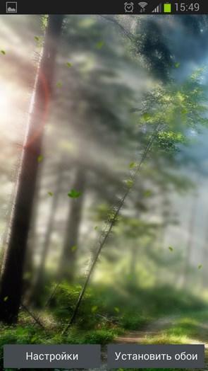 Forest Morning Live Wallpaper – утро в лесу для Android