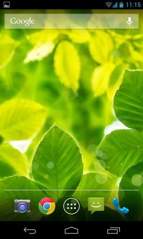 Summer Leaves - живые обои на смартфоны Android
