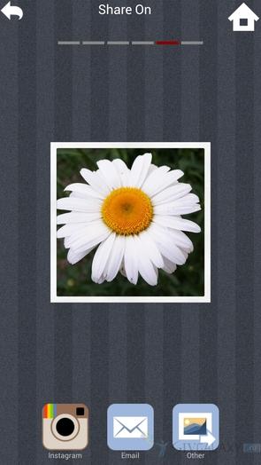 XnExpress Camera Pro - экспорт фото