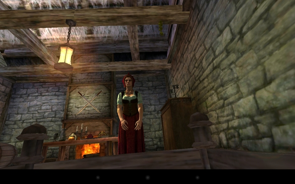 Ravensword: Shadowlands - начало
