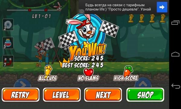 Bunny Skater - игра на Самсунг Галалкси С4