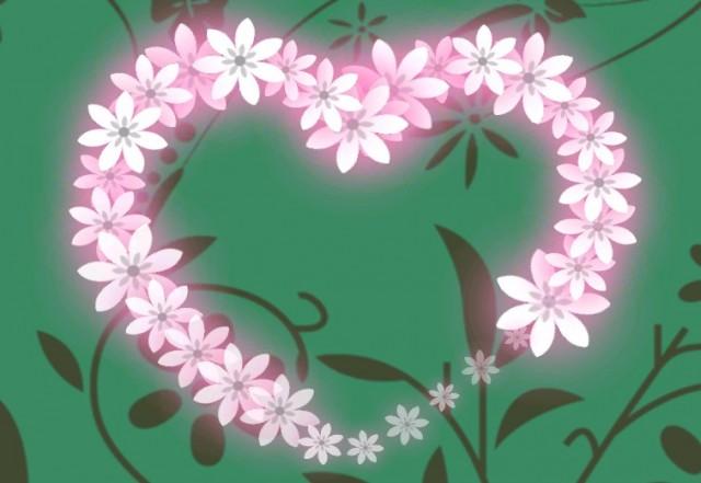 Flowers Live Wallpaper - интерактинвны обои на Android