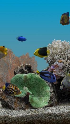 Marine Aquarium – морское дно для Галакси С4