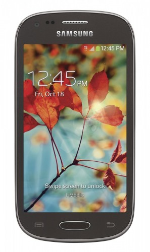 Samsung Galaxy Light - внешний вид