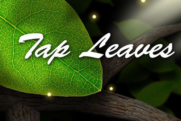Tap Leaves Live Wallpaper – красивые ветви для Samsung Galaxy S4