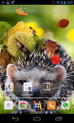 Осенние анимированные обои на Galaxy S4