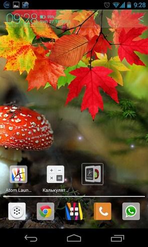 Осенние живые обои на смартфоны Андроид