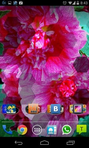 Photile Pro Live Wallpaper - интерактивные обои на Galaxy S4