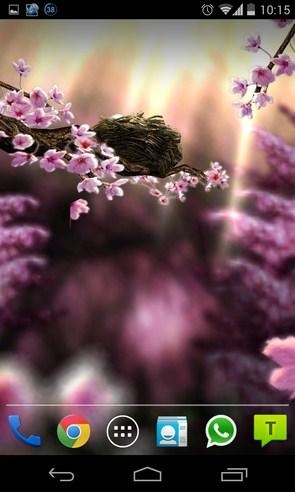 Season Zen HD - интерактивные обои на Галакси С4
