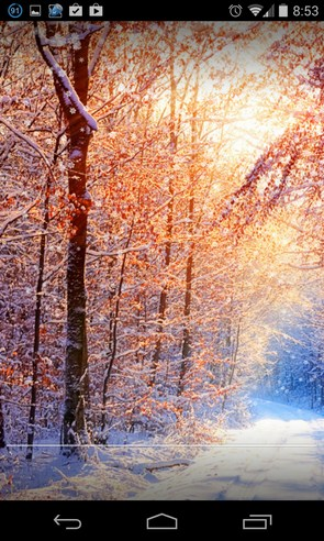 Winter Live Wallpaper HD - интерактивные обои на Galaxy S4