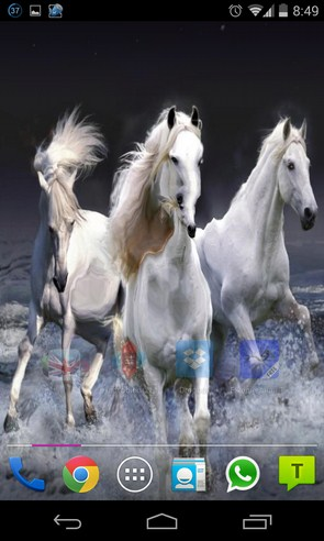 Beautiful Horses Wave effect  - живые обои на Galaxy S4