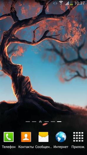 Woody Land - для Галакси С4