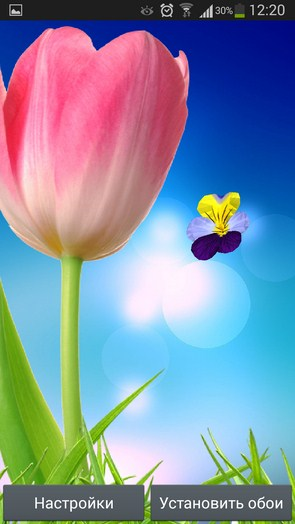 3D Flowers Live Wallpaper – яркие цветы для Galaxy S5, S4, S3, Note 3, Ace 2