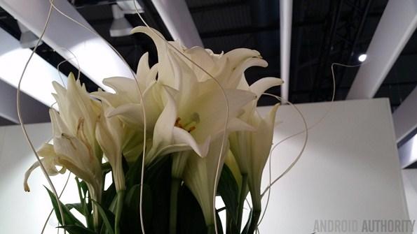 Примеры фотографий и видео сделаных камерой Galaxy S5