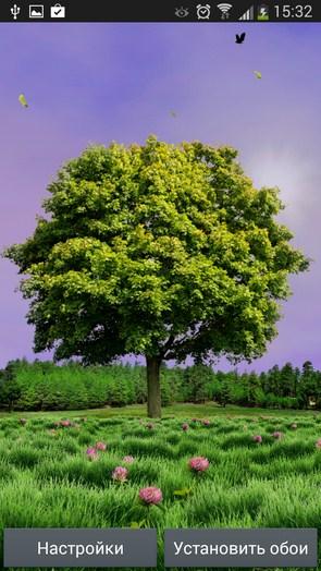 Summer Trees – одинокое деревце для Галакси С5, С4, Нот 3