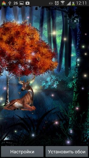 Магический лес – сказочная поляна для Samsung Galaxy Note 3, S5, S4, S3