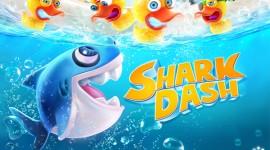 Shark Dash – пожиратель уток