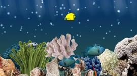 Aquarium 3D – обои с рыбами на Galaxy Note 4 S5 S4 Note 3