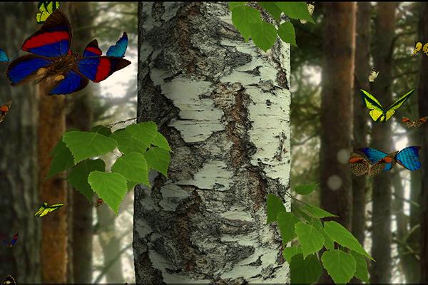 Бабочки 3D – лес с мотыльками для Samsung Galaxy Note 4, Note 3, S5, S4, S3
