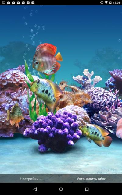 Aquarium Fish – трёхмерные рыбки для Samsung Galaxy Note 4, Note 3, S5, S4, S3