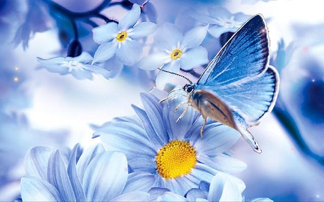 Весна фото природа